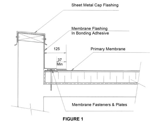TP Section 7: Membrane Flashing | ARCA
